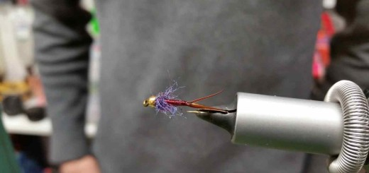 Friday Night Flies – Columbia River Copper John Fly