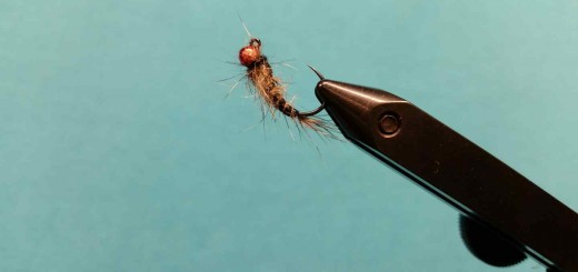 Friday Night Flies – DT Jig Fly Pattern