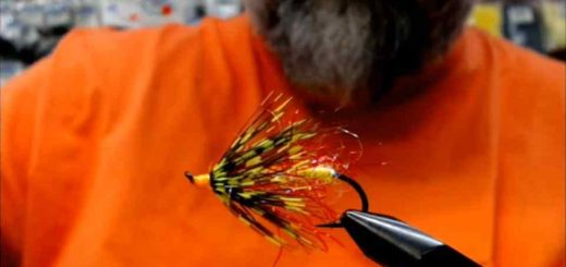 Friday Night Flies - Salmon Bolide Fly