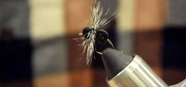 Friday Night Flies - Black Ant dry Fly