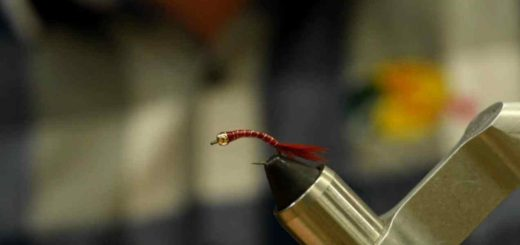 Friday Night Flies - Bloodworm