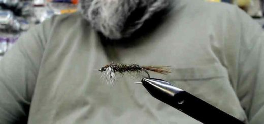 Friday Night Flies - FNF Halfback Nymph