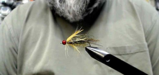 Friday Night Flies - FNF Mayfly Nymph