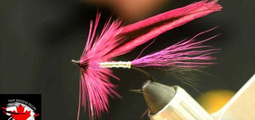 Friday Night Flies - FNF Spruce Fly Variant