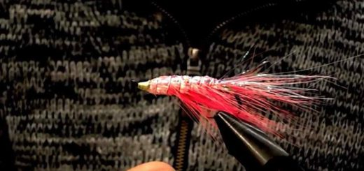 Friday Night Flies - Pinks Sparkle Shrimp