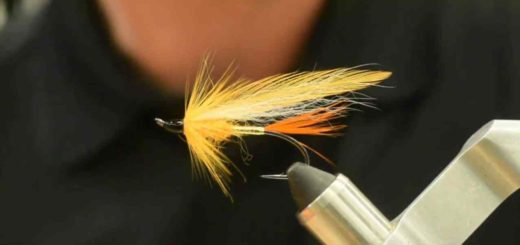 Friday Night Flies - Tolley's Polar Shrimp Variant
