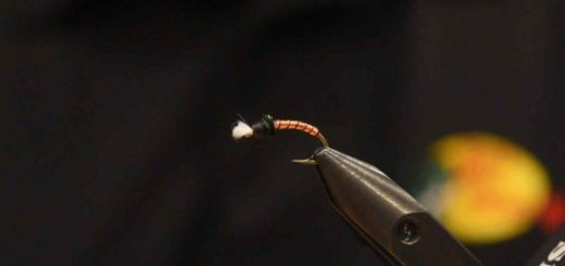 Friday Night Flies - Copper Top Chironomid