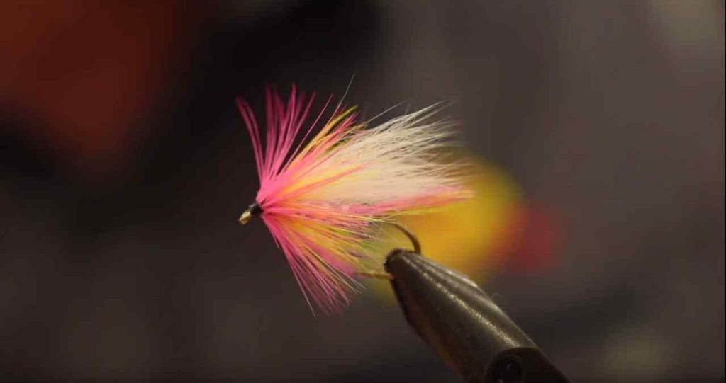 Friday Night Flies - Borden Special - Pink Salmon