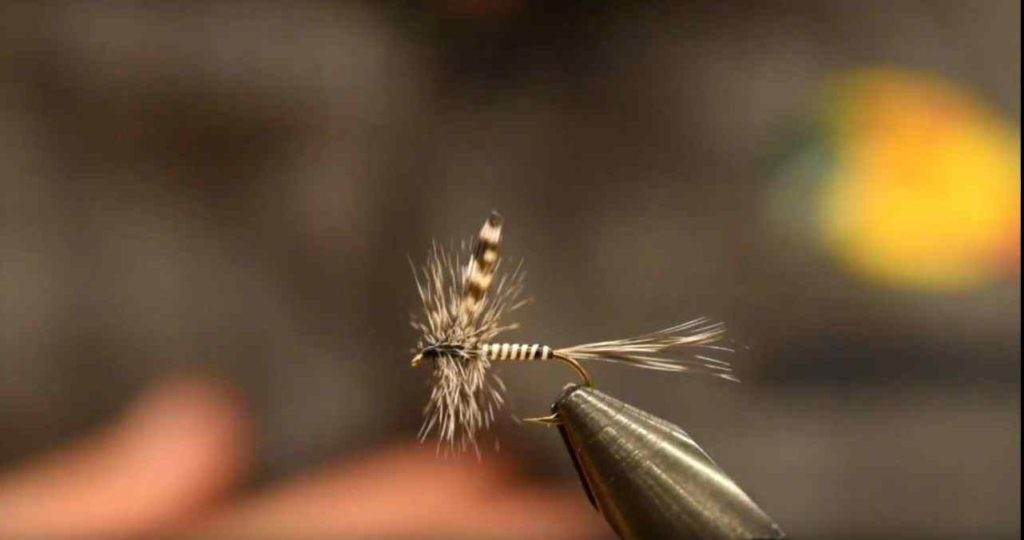 Friday Night Flies - Mayfly - Mosquito