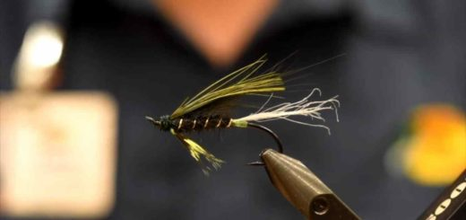 Friday Night Flies - Steelhead Spratley