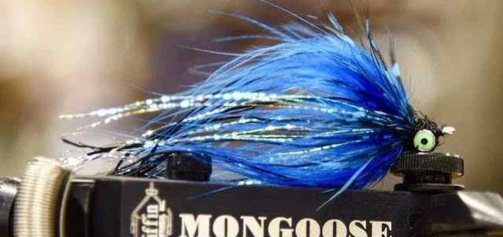 Friday Night Flies - Jon Hazlett's Dirk Wiggler