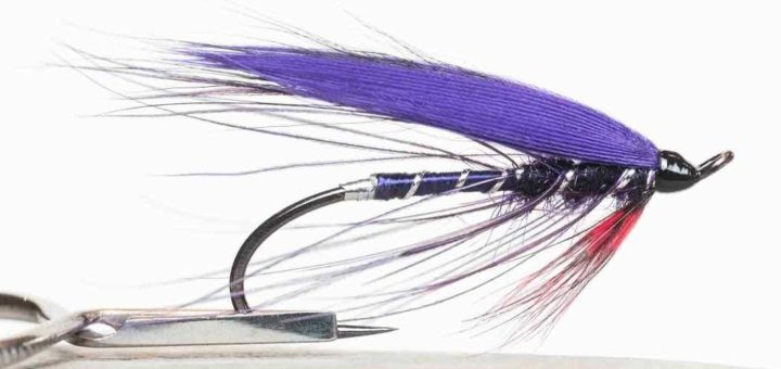 Friday Night Flies - Purple Spey