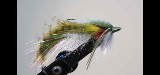 Friday Night Flies - Kootenay Invader