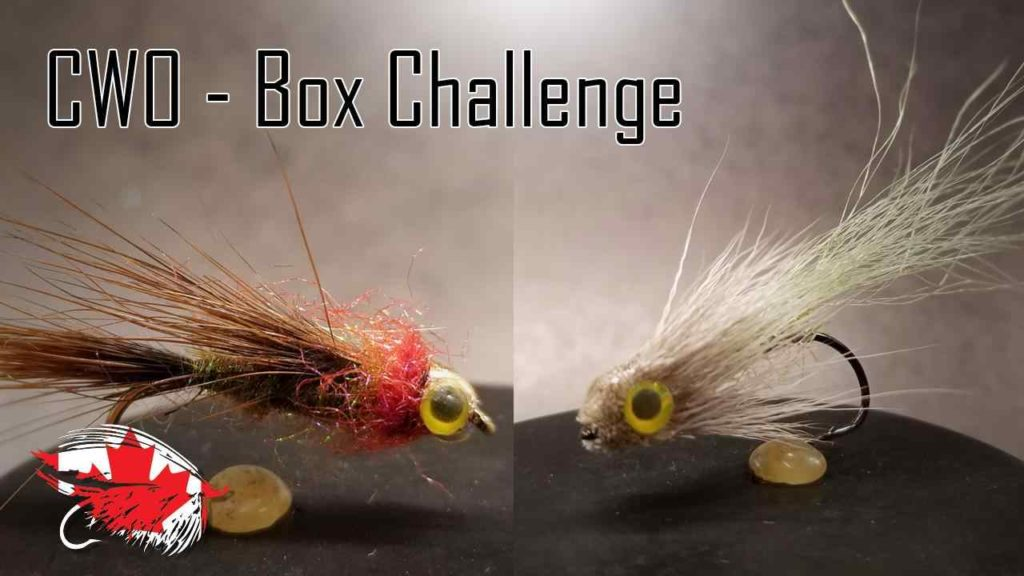 Friday Night Flies - Chinook Wind Outfitters Box Challenge #1