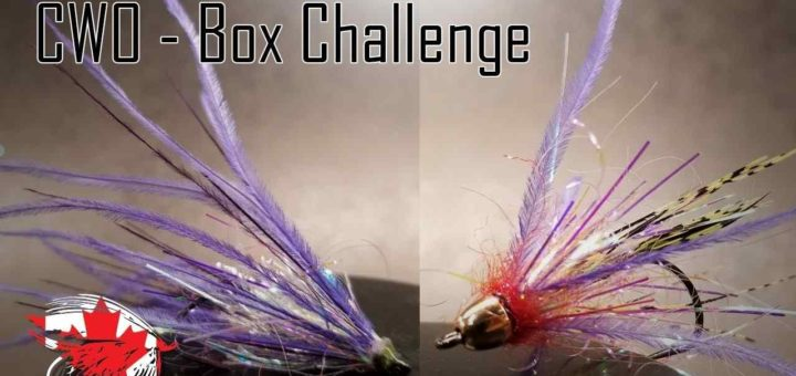 Friday Night Flies - Chinook Wind Outfitters Box Challenge #2
