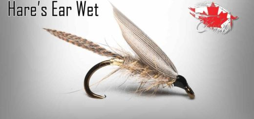 Friday Night Flies - Hare's Ear Wet Fly