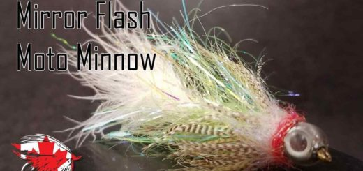 Friday Night Flies - Mirror Flash Moto Minnow