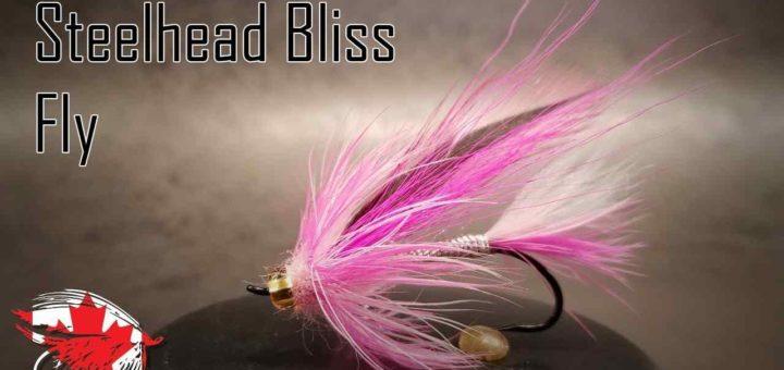 Friday Night Flies - Steelhead Bliss Fly