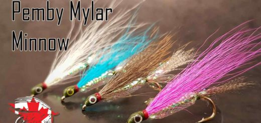Friday Night Flies - Pemby Mylar Minnow