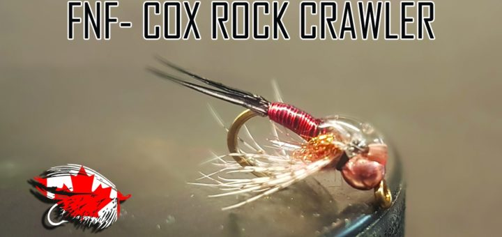 FNF-Cox Rock Crawler