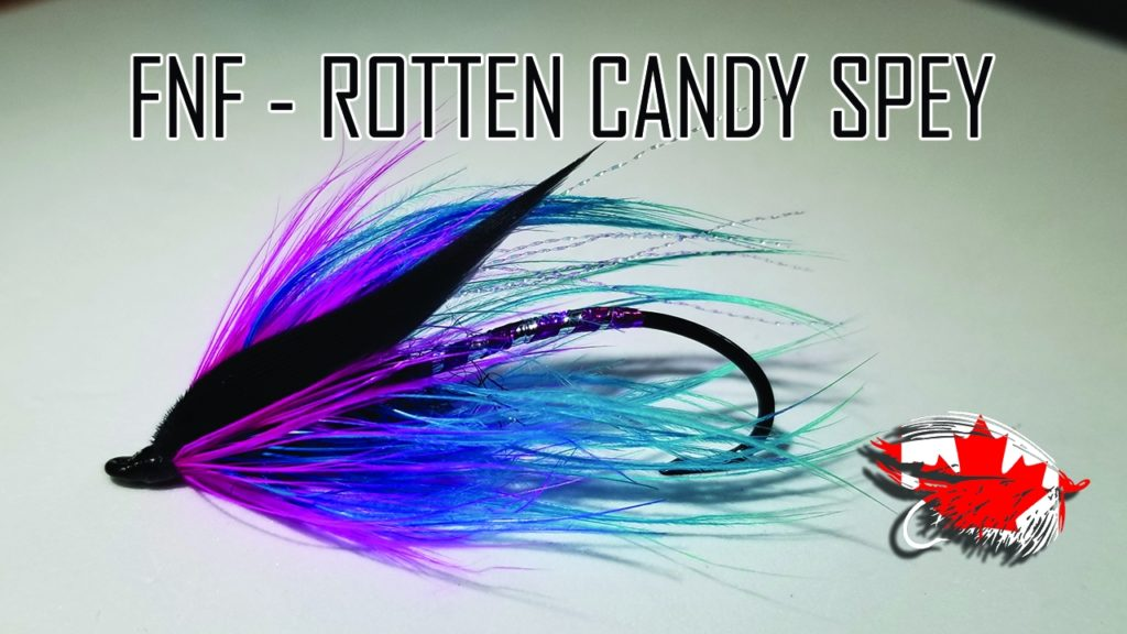 FRIDAY NIGHT FLIES - ROTTEN CANDY SPEY FLY
