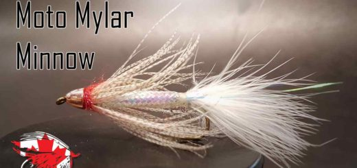 Friday Night Flies - Mylar Moto Minnow
