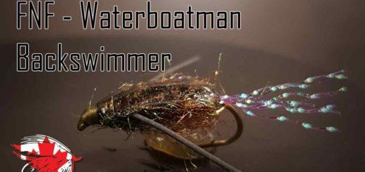 Friday Night Flies - Water Boatman - Backswimmer