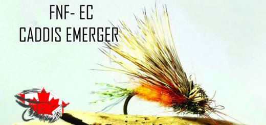 Friday Night Flies - EC Caddis Emerger