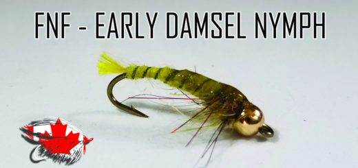 Friday Night Flies - Early Damsel Nymph