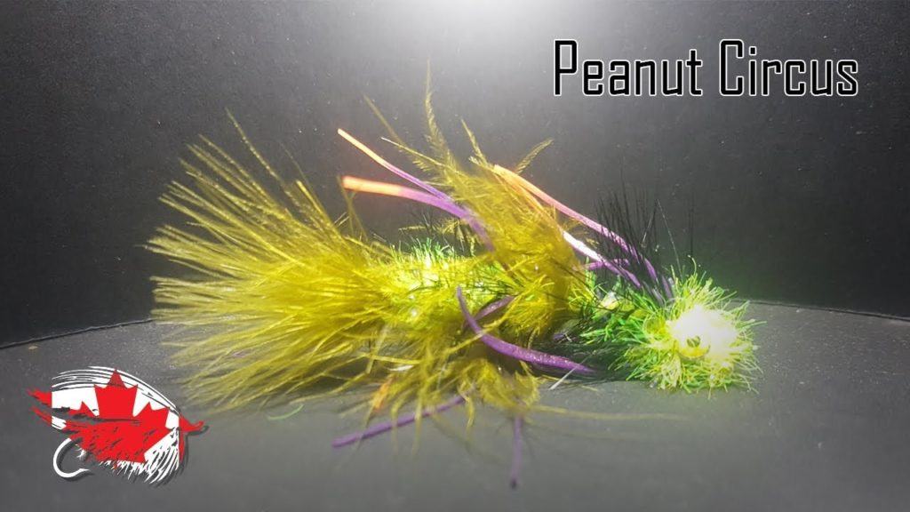 Friday Night Flies - Peanut Circus