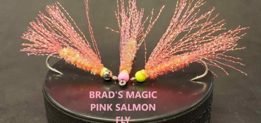 Friday Night Flies - Brad's Magic Pink Salmon Fly