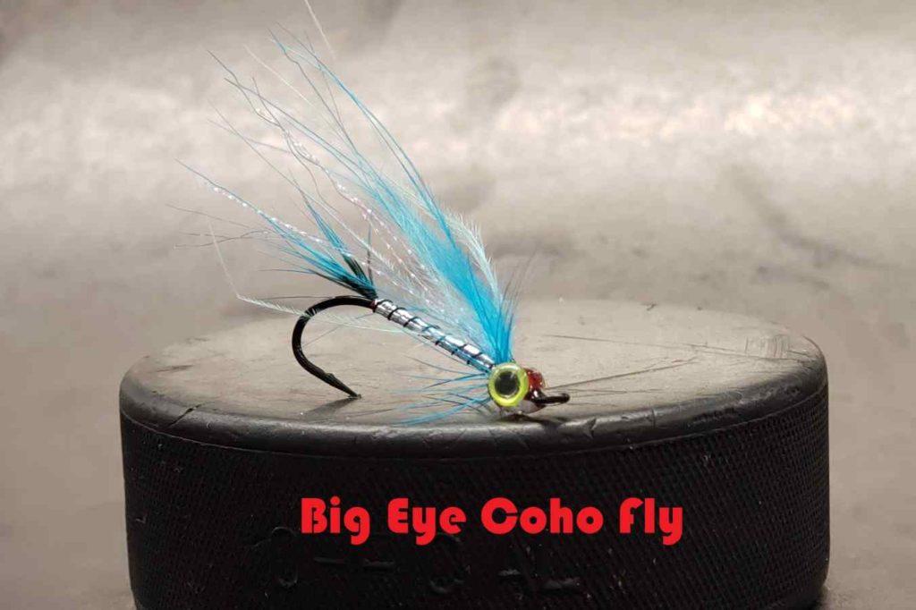 Friday Night Flies - Big Eye Coho Fly