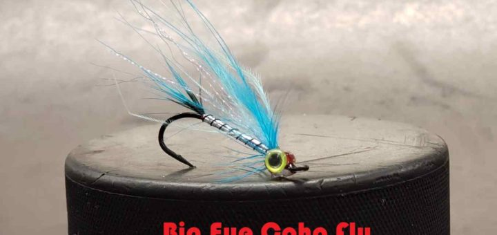 Friday Night Flies - Big Eye Coho Fly