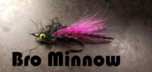 Friday Night Flies - Bro Minnow