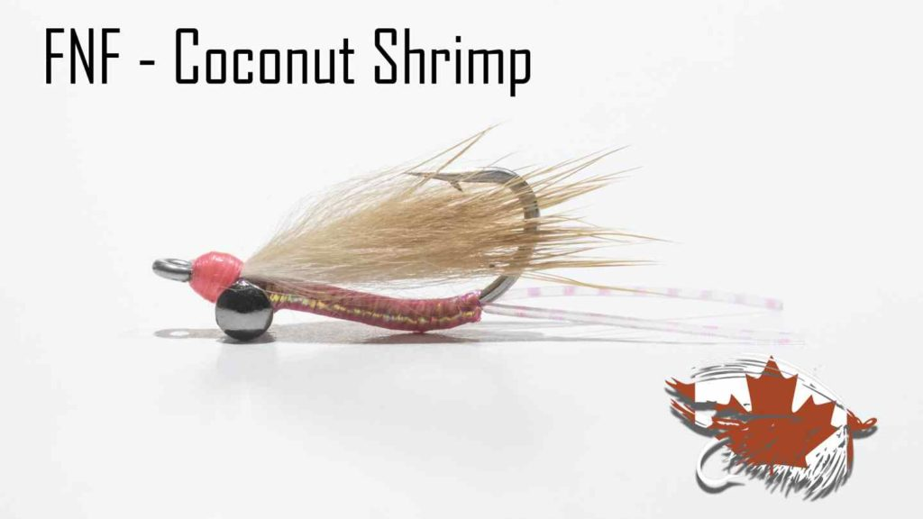 Friday Night Flies - Coconut Shrimp