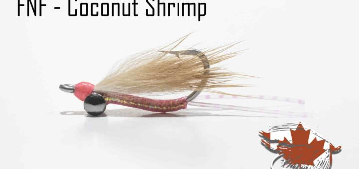 Friday Night Flies - Coconut Shrimp