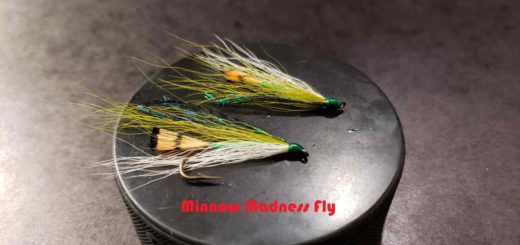 Friday Night Flies - The Minnow Madness Fly