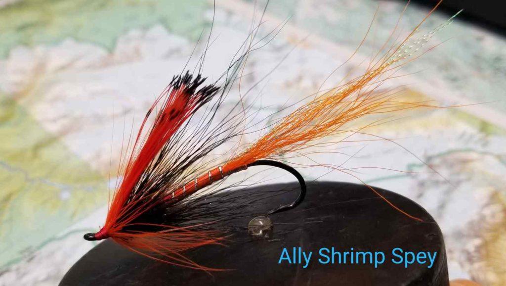 Friday Night Flies - Ally Shrimp Spey