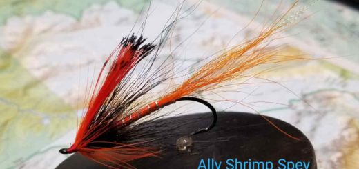 Friday Night Flies - Ally Shrimp Spey