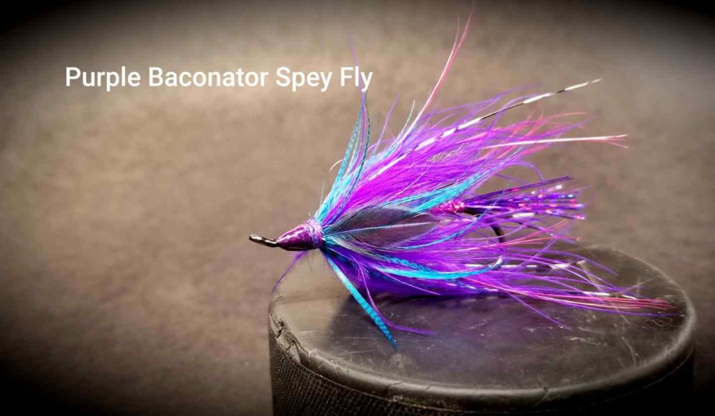 Friday Night Flies - Purple Baconator Spey Fly