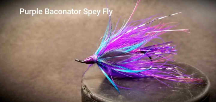 Friday Night Flies - Purple Baconator Spey Fly