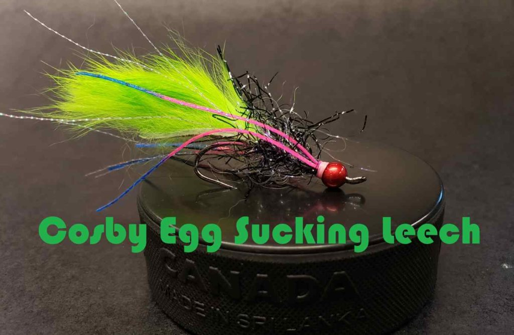 Friday Night Flies - Cosby Egg Sucking Leech