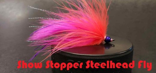 Friday Night Flies - Show Stopper Steelhead Fly