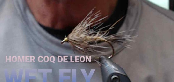 Friday Night Flies - Homer Coq De Leon Wet Fly