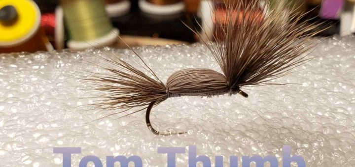 Friday Night Flies - Tom Thumb Dry Fly